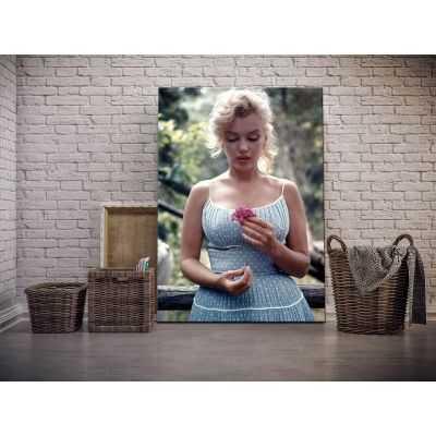 Quadro Marilyn Monroe in giardino con fiori colorata stampa su tela mrv134
